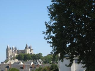 Saumur - Pays de la Loire. 2 rooms furnished flat - Blaison-Gohier vacation rentals