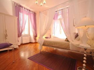 JUNIOR SUITE COLISEUM - Rome vacation rentals