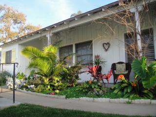 New House Shots 014.JPG - Zen Retreat at Windansea Beach - walk to beach - La Jolla - rentals