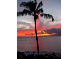 Sunset view, from the second level lanai. - Charming OCEANFRONT Beach CONDO - The Kuleana 415 - Lahaina - rentals