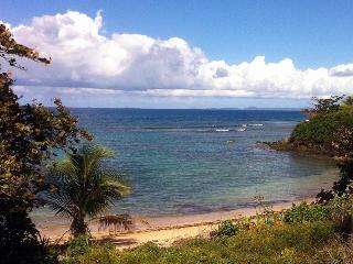 """LAS OLAS"" 100 feet to a beach cove... - Vieques vacation rentals"
