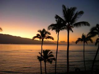 Romantic Ocean Views, Only $185 nt-  Ocean Front Maalaea Kai - Wailuku vacation rentals