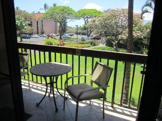 Partial Ocean View at Maui Vista and Kamaole Beach - Kihei vacation rentals