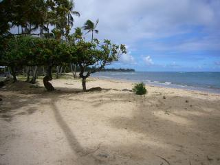 across the street - Beautiful Hawaiian Home - Hauula - rentals