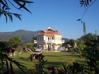 Luxury 6 bedroom villa private pool and gardens - Dalyan vacation rentals