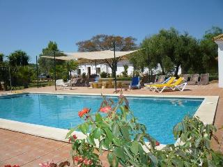 Luxury 10 bedroom Cortijo with large private pool - Seville vacation rentals