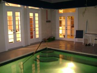 Pool.JPG - Hemmingway's Retreat - Key West - rentals