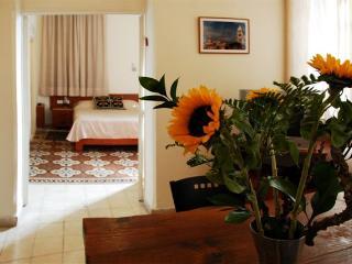 Ariela's Place - Unique Suite near the Old City - Jerusalem vacation rentals