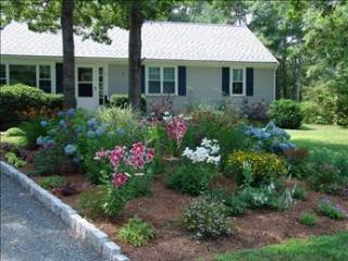 Centerville Vacation Rental (95232) - Barnstable vacation rentals