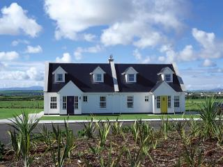 Bright House with Patio and Microwave - Ballybunion vacation rentals