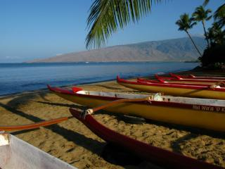 Just another day in paradise - Your BOSS called...your Maui vacation is APPROVED! - Kihei - rentals