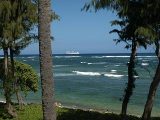 Oceanfront view Vacation Rentals condos - Kauai !! - Kapaa vacation rentals