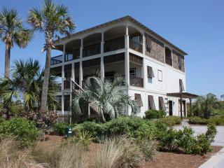 Luxury Beach Home, Gulf View,Bikes,Pool,Arcade!!! - Seacrest vacation rentals