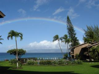 Just another day in paradise! - 2B Ocean Front - Polynesian Shores Condominium - Lahaina - rentals