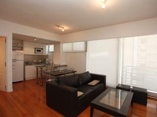 Luxurious 2-Bedroom in Brand-New Building w/ Sauna, Gym, Wi-Fi, Pool (ID#56) - Buenos Aires vacation rentals