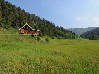 Cozy 1 bedroom House in Bozeman - Bozeman vacation rentals