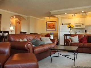 Convention Ctr & Pike Place Market combined w - Seattle Metro Area vacation rentals