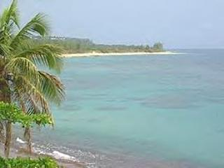 Shacks Beach - Beach Villas in Western Puerto Rico - Shacks/Beach - Isabela - rentals