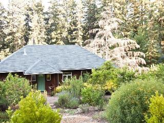 Lavender Cottage in Wine Country Near Sonoma Coast - Sebastopol vacation rentals