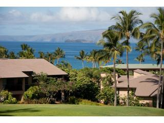 SpectacularOceanView May & June Special $250.00 - Makena vacation rentals