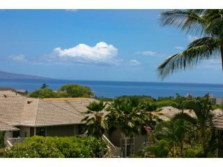 Great Ocean View   Family Friendly GC#42 - Wailea vacation rentals