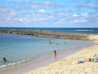 Tropical Paradise - Newly Remodeled and Modern - Haleiwa vacation rentals