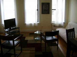 DSC00140.JPG - Modern Apartment in a Townhouse - New York City - rentals