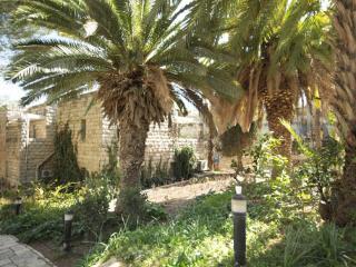 Exclusive Penthouse next to King David hotel in Jerusalem (KF) - Jerusalem vacation rentals