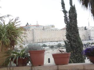 Exclusive Penthouse next to King David hotel in Jerusalem (KF) - Jerusalem vacation rentals