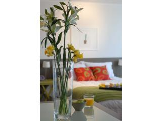 Bellas Artes, Upscale apartments at Cerro Urbano - Santiago vacation rentals