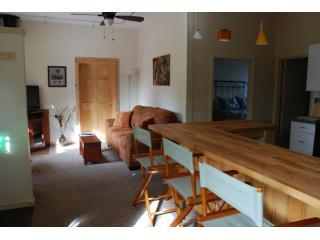 breakfast bar and living room - The Guesthouse at Trimble - Durango - rentals
