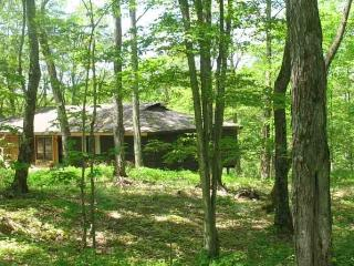 Maple Arbour -  living lightly on the earth - Minden vacation rentals