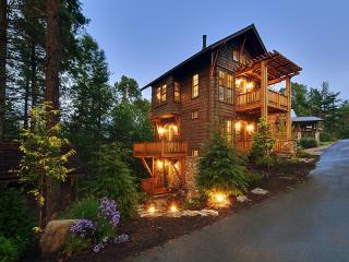 The Owl's Nest - Black Mountain vacation rentals
