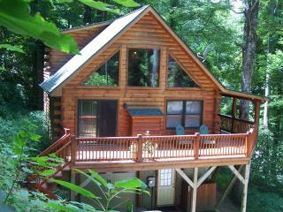 Tall Trees Cabin Mountain Retrete weekend skiing special $$$ - Maggie Valley vacation rentals