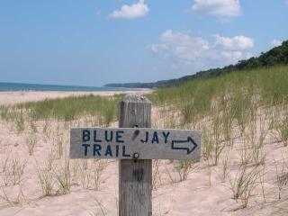 Warren Dunes State Park-Hot Tub-Next to Wineries - Bridgman vacation rentals