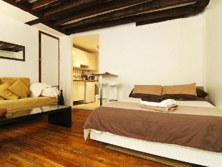 Charming, Fully-Furnishd apartment in Champs Elysees - Paris vacation rentals
