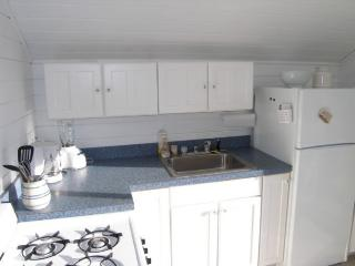Bright 1 bedroom East Sandwich Cottage with Deck - East Sandwich vacation rentals