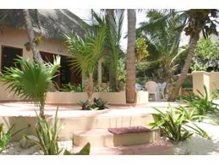 Casa Grande Beachfront porch - Tropical Evergreens beach home Soliman Bay, Tulum - Soliman Bay - rentals