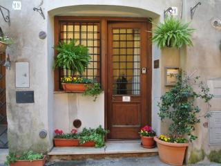 One-bed house with wi-fi in picturesque rural Rome - Lazio vacation rentals