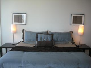 Great Huge 2bd/2ba, Mag Mile, Museums, Parks - Chicago vacation rentals