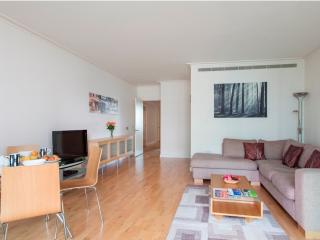 Dockland 2Bed Apartments with Gym & Pool - London vacation rentals