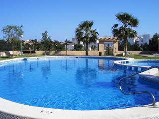 pool - Apartment, 2 bed, private roof terrace,sky tv - Torrevieja - rentals