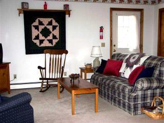 Living room - Acadia Suites in Bar Harbor Maine - Bar Harbor - rentals