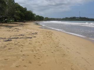 Numero Uno Ocean view condo - Bocas del Toro vacation rentals