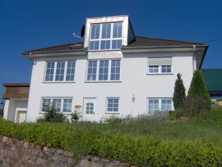 house rhineview - Rheinblick-Rhineview - Bacharach - rentals