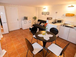 Zagrebek Apartments in strict city center - Zagreb vacation rentals