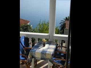 2143 A5 Dijana(2+2) - Brist - Brist vacation rentals