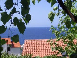 2176 A4(4+2) - Ivan Dolac - Ivan Dolac vacation rentals