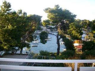 06103HVAR  A2(2+1) Maslina - Hvar - Island Hvar vacation rentals