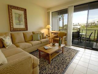 Grand Champions #163 - Wailea vacation rentals